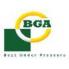 BGA (1)